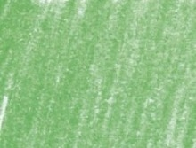 Derwent, Pastel Pencil - 430 Pea Green