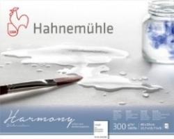 Hahnemühle, Harmony 300g - GT - 24x30cm - 12ark