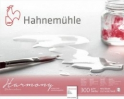 Hahnemühle, Harmony 300g - GF - 30x40cm - 12ark