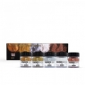 Shinhan Professional Pigment - Metallic sort x 5